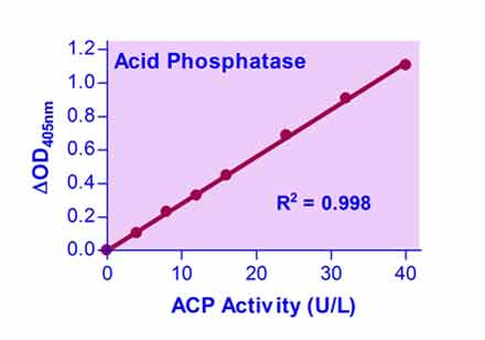 Acid Phosphatase Colorimetric Assay Kit