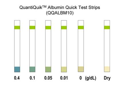 Albumin Quick Test Strips